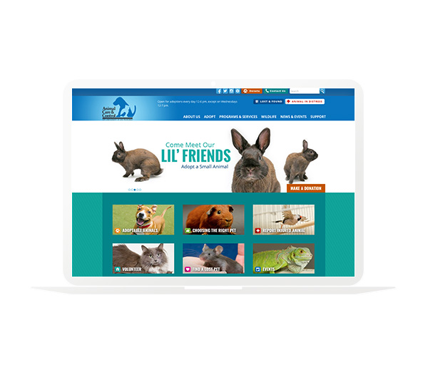 SF Animal Care and Control Website Homepage