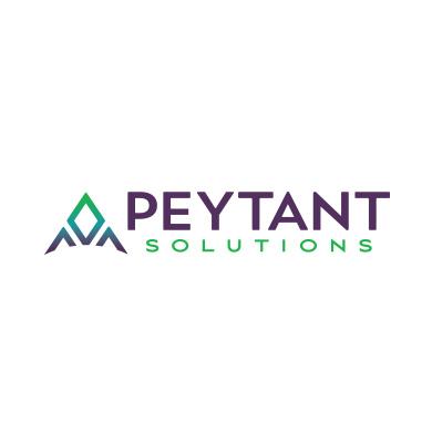 Peytant Solutions Logo