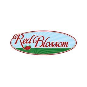 Red Blossom Logo