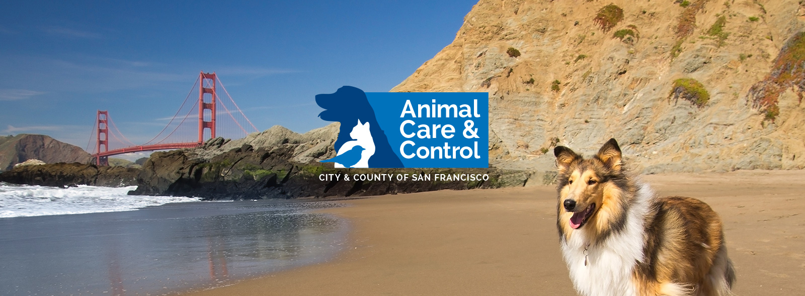 SF Animal Care and Control Logo Website Header with Golden Gate Bridge and Dog