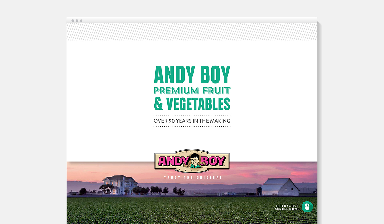 D'Arrigo Andy Boy Interactive PDF Cover