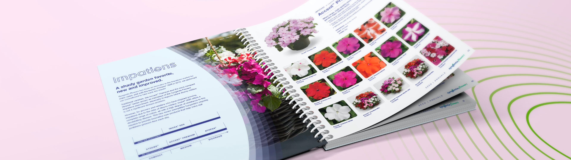Inside pages of Syngenta Flowers 2020-2021 annual catalog