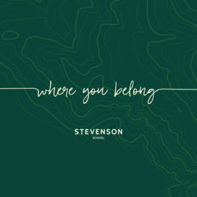 Stevenson tagline and logo on green pattern