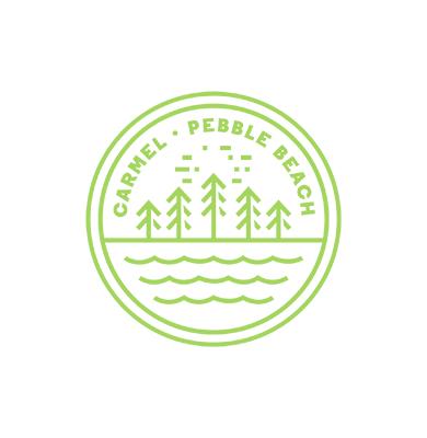 Stevenson Summer Logo