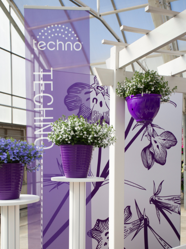 Cast 2019 Techno display