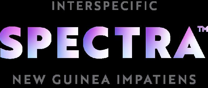 spectra logo development three